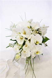 Resim Phalaenopsis Orkide Gelin buketi