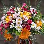 Kategori resimi Kır Çiçekleri