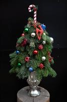 Detayları göster PINE TREE