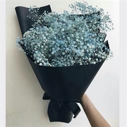 Resim BLUE